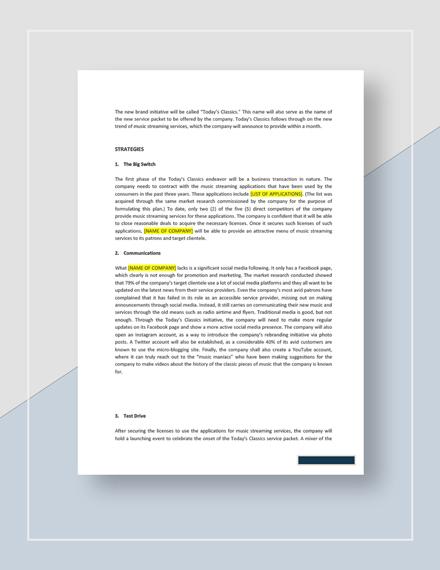 Brand Management Plan Download