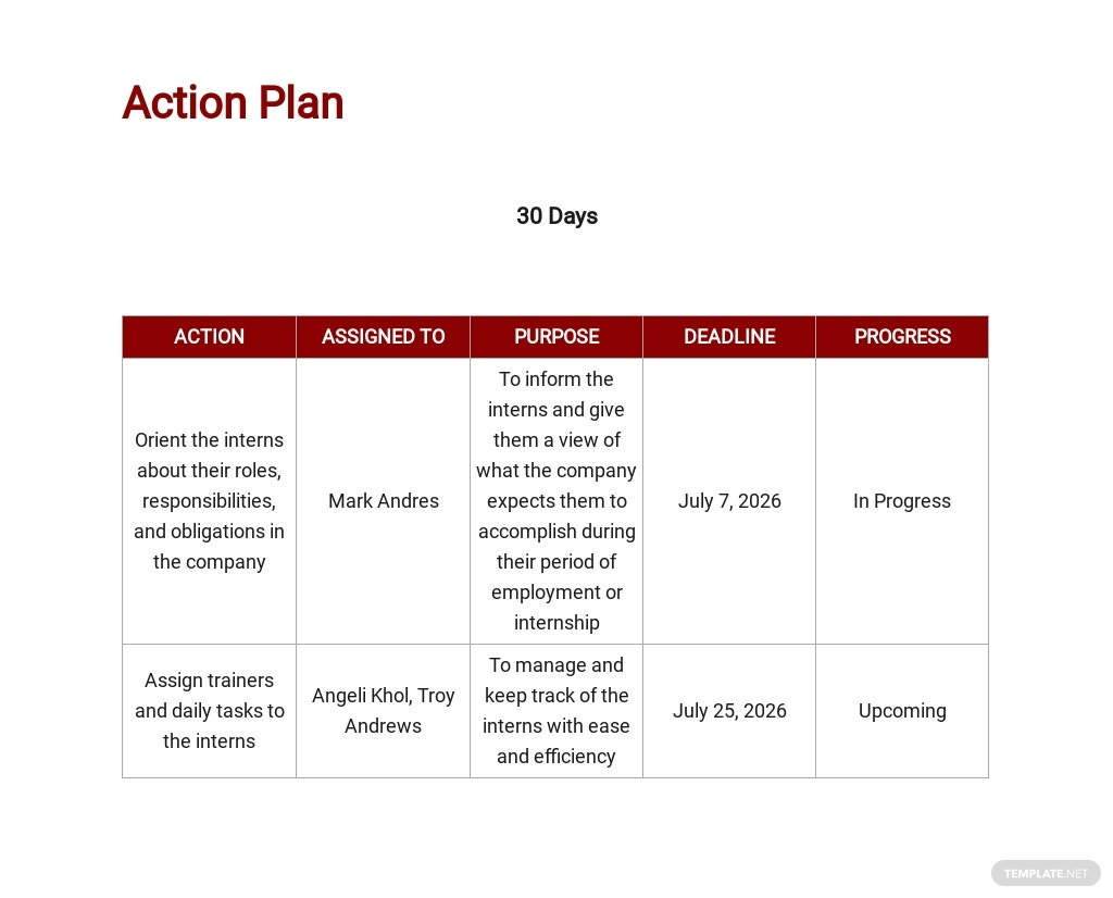 30 Day Action Plan Template 3.jpe