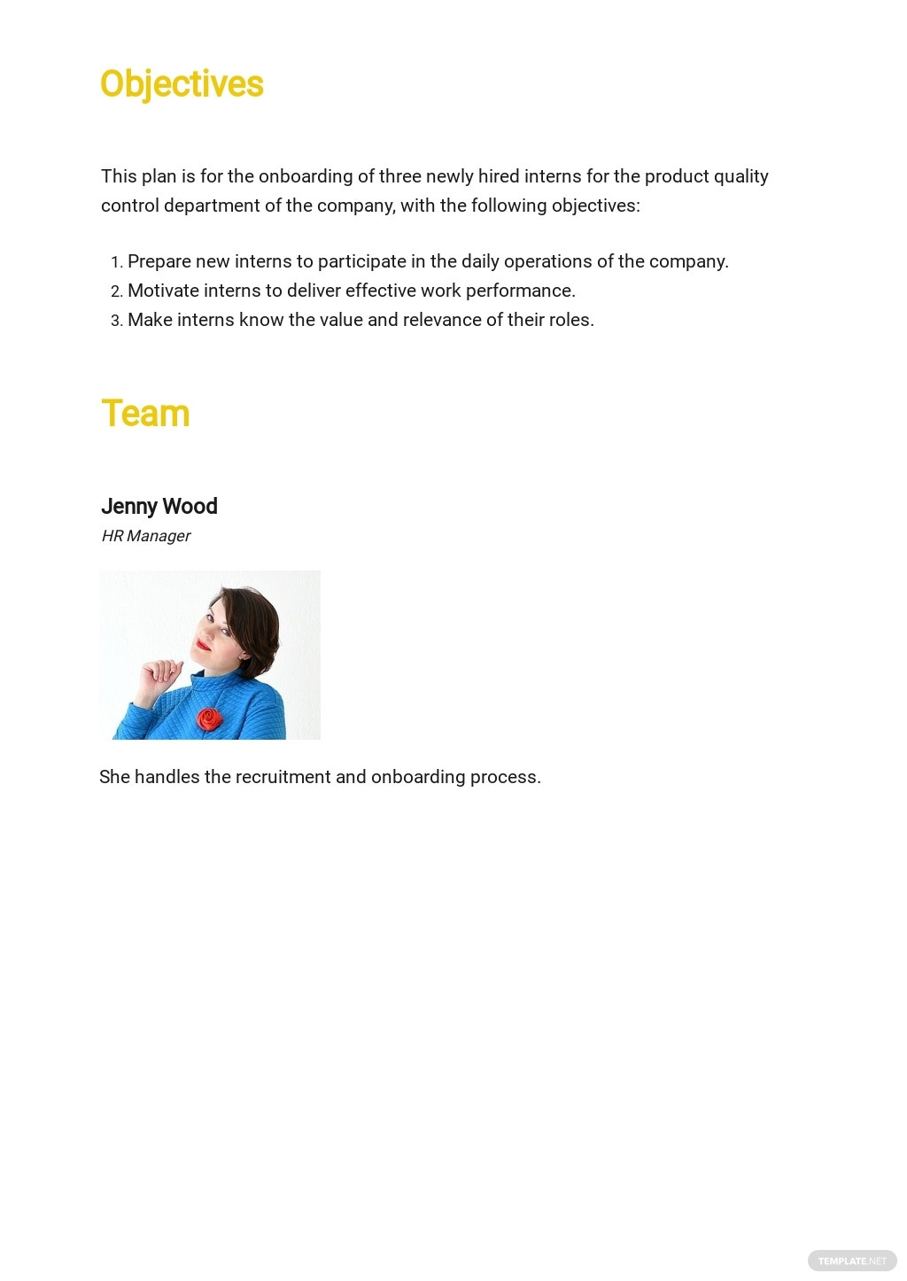 90 Day Business Plan Template 1.jpe