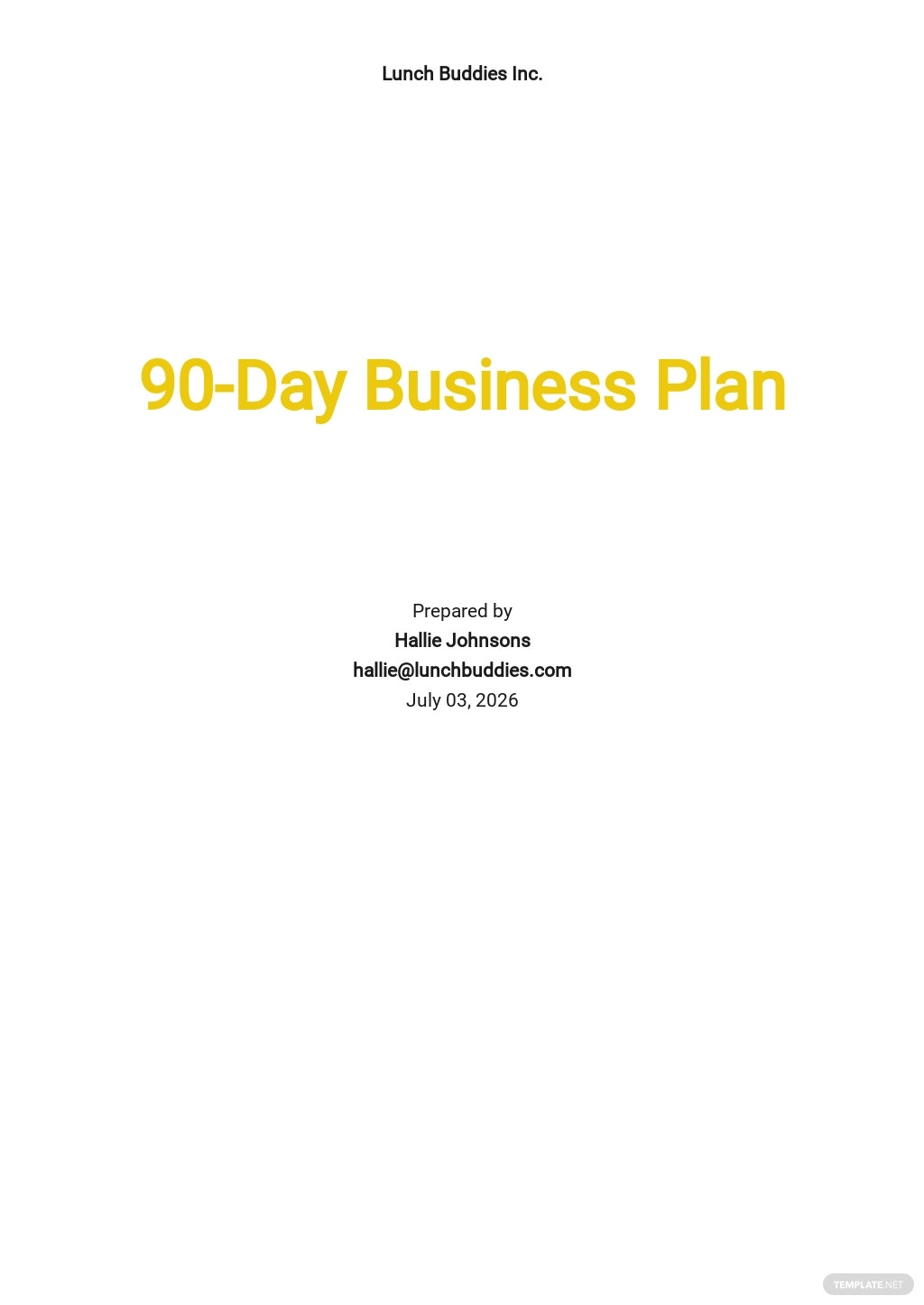 90-Day Business Plan Template