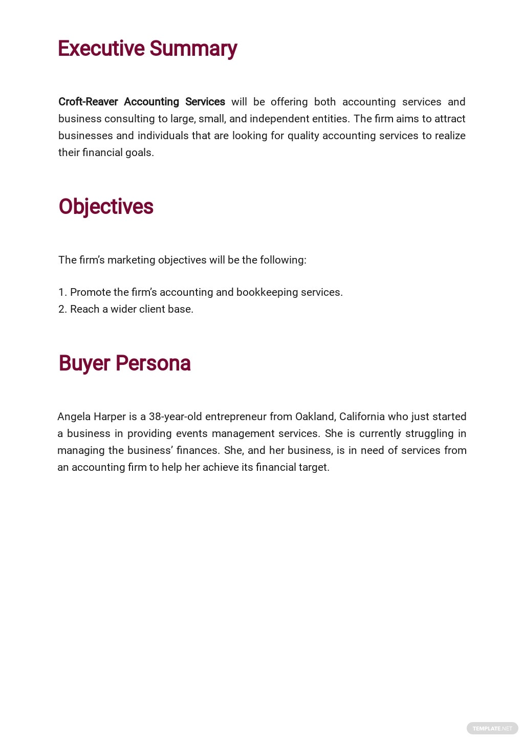 Accounting Firm Marketing Plan Template 1.jpe