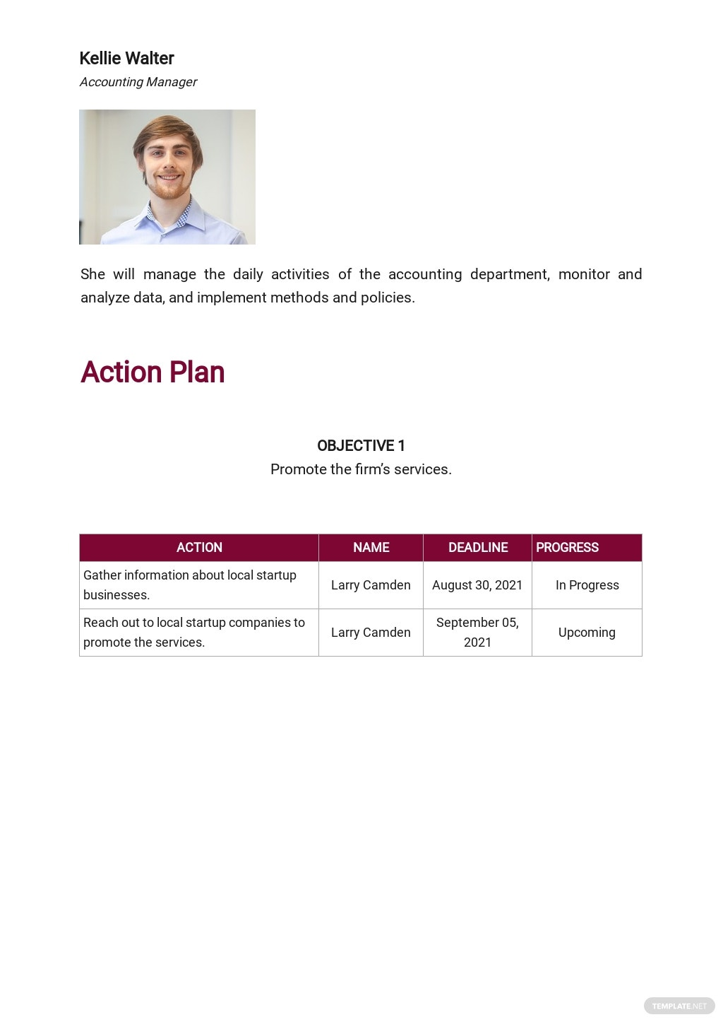 Accounting Firm Marketing Plan Template 4.jpe