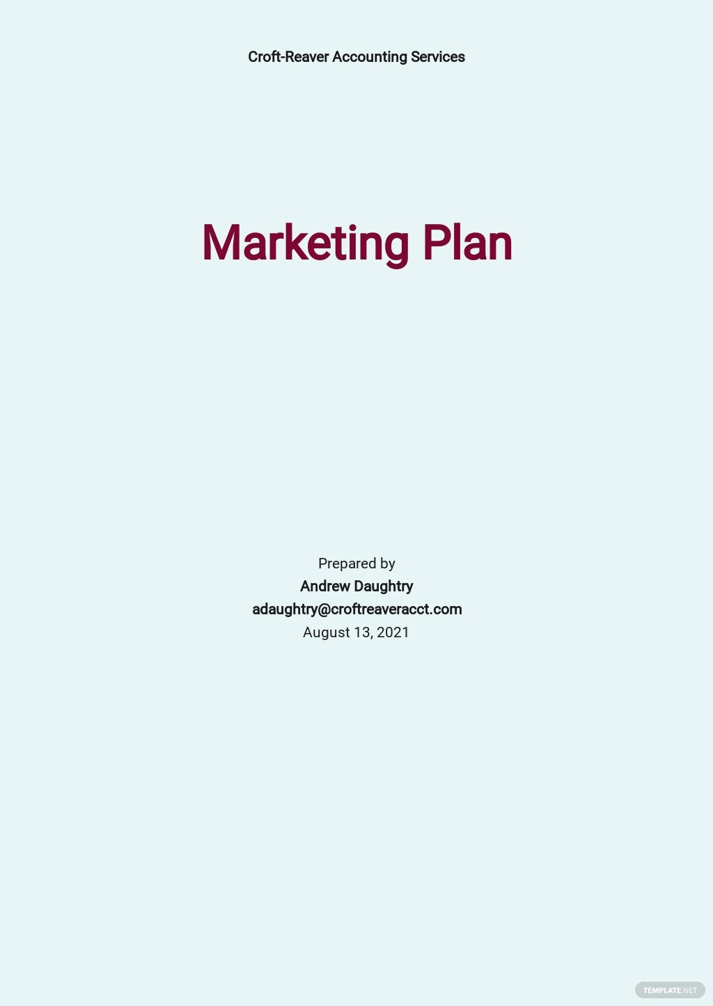 Accounting Firm Marketing Plan Template.jpe