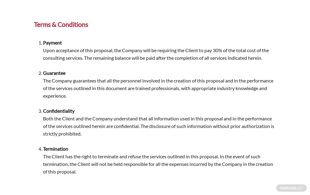 Consultant Proposal Template 7.jpe