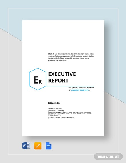 Executive Report Template