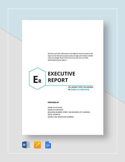 executive report 2