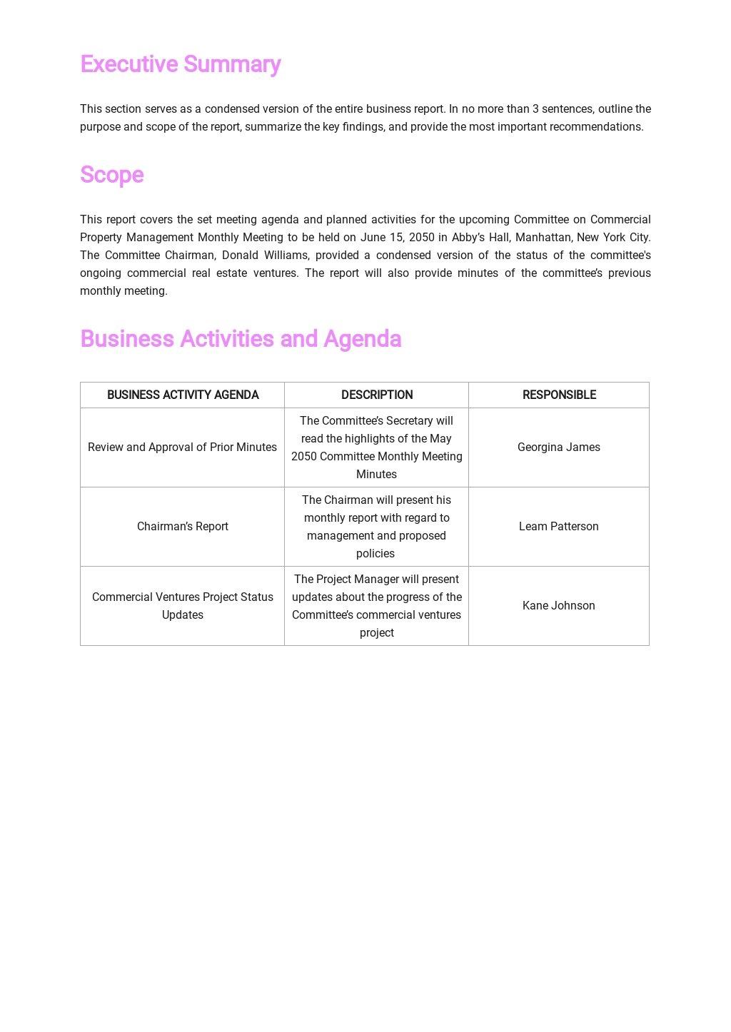 Meeting Agenda Report Template 1.jpe