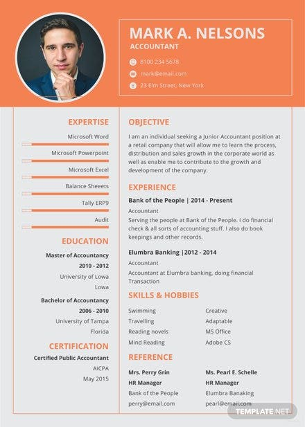 Free Experienced Accountant Resume