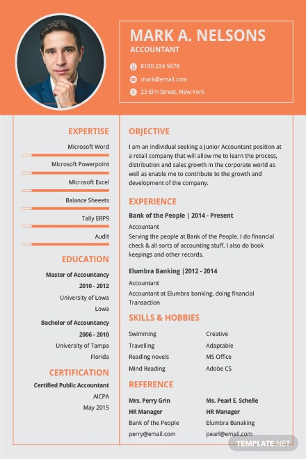 free experienced accountant resume format in adobe illustrator