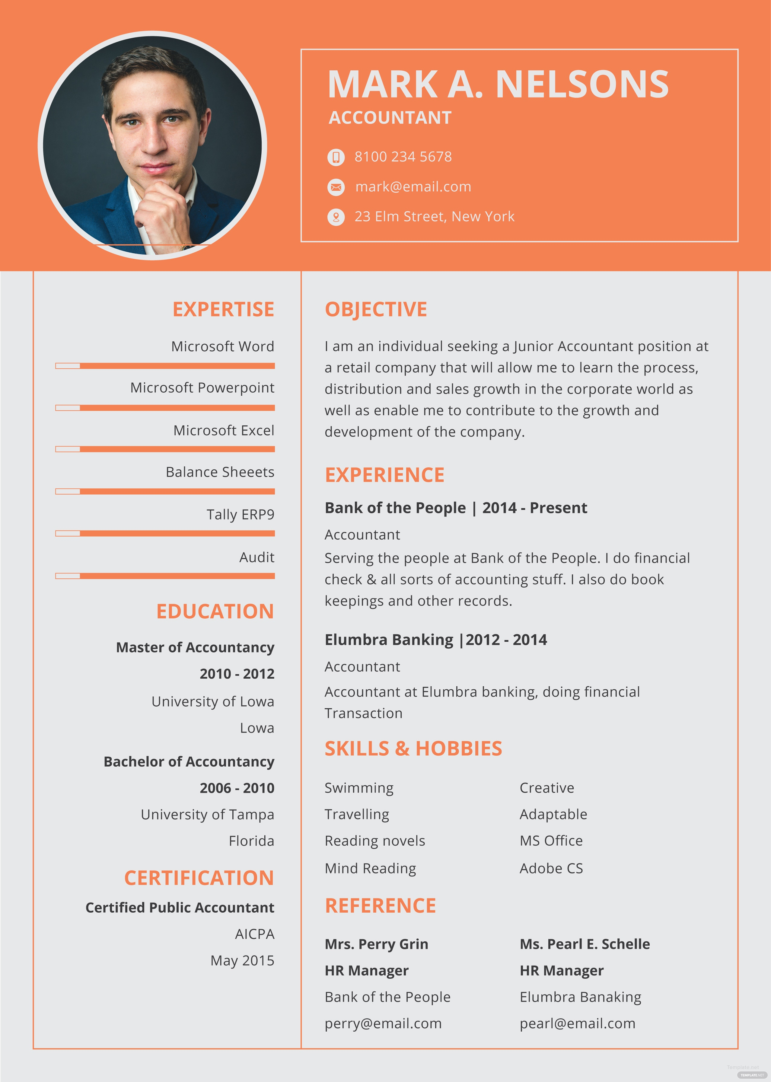 Free Experienced Accountant Resume and CV Template in Adobe ...