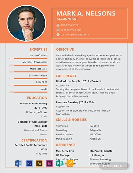 Experienced Accountant Resume Format Template