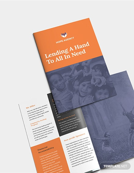 Sample BiFold Fundraising Brochure