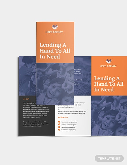 TriFold Fundraising Brochure Download