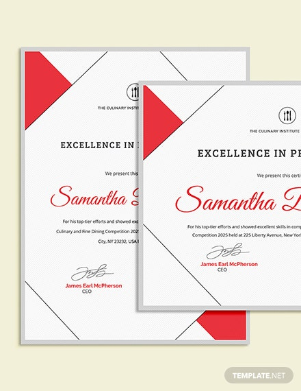 Sample Excellence Award Certificate