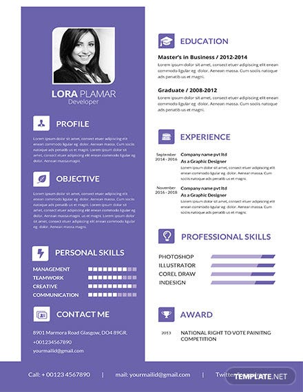 Free Professional Developer Resume Template
