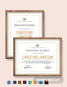 Merit Award Certificate Template