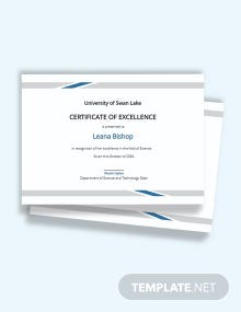 Modern Certificate of Excellence Template