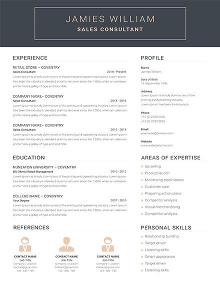 Creative Sales Consultant Resume