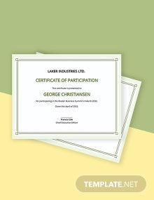 Modern Participation Certificate Template