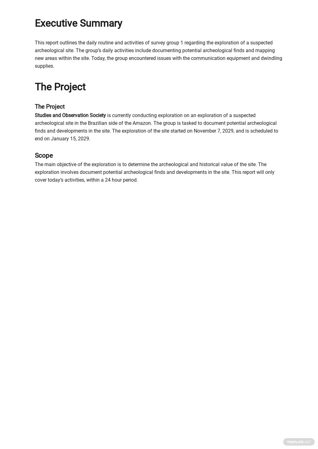 Daily Activity Report Template 1.jpe