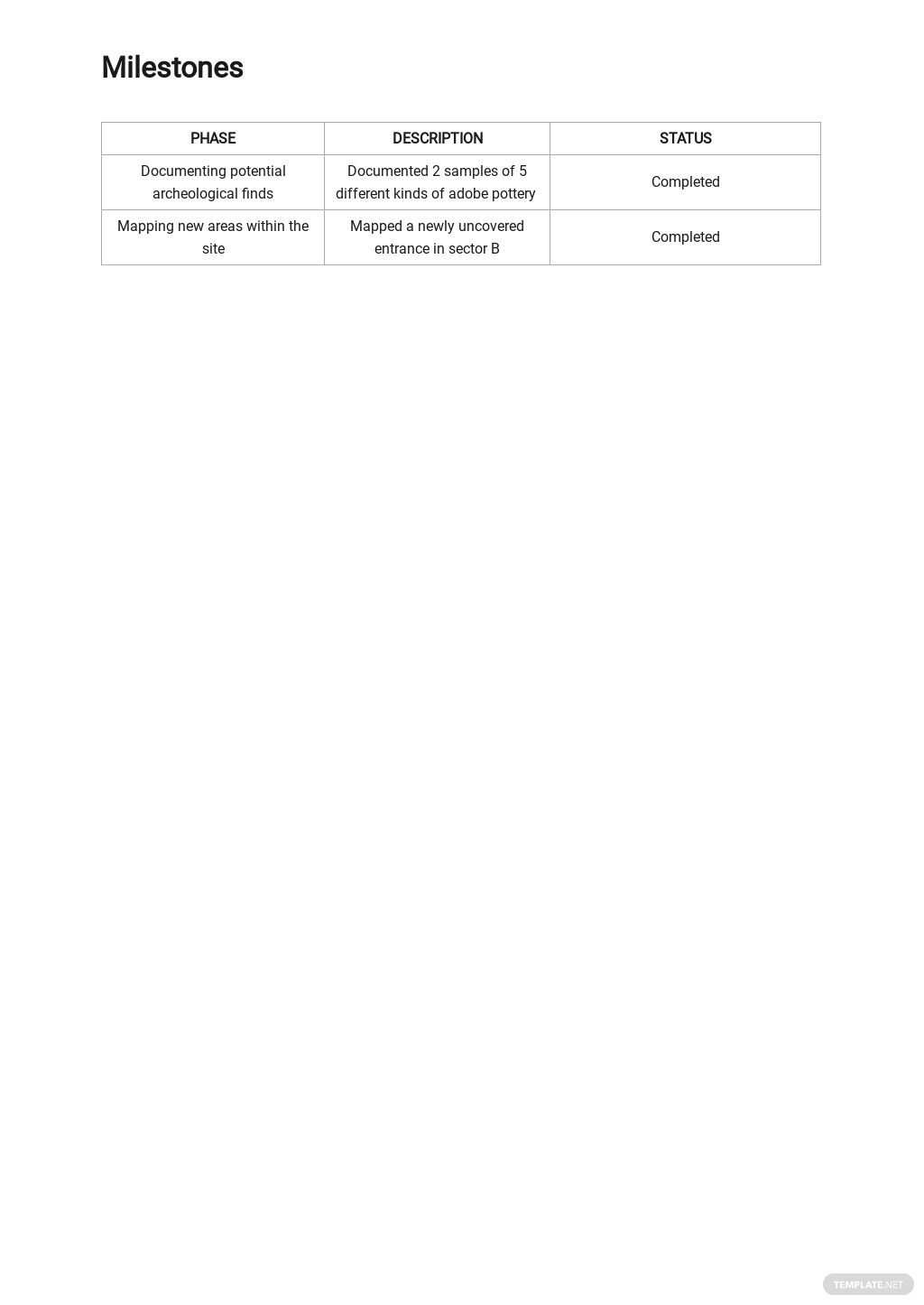 Daily Activity Report Template 2.jpe