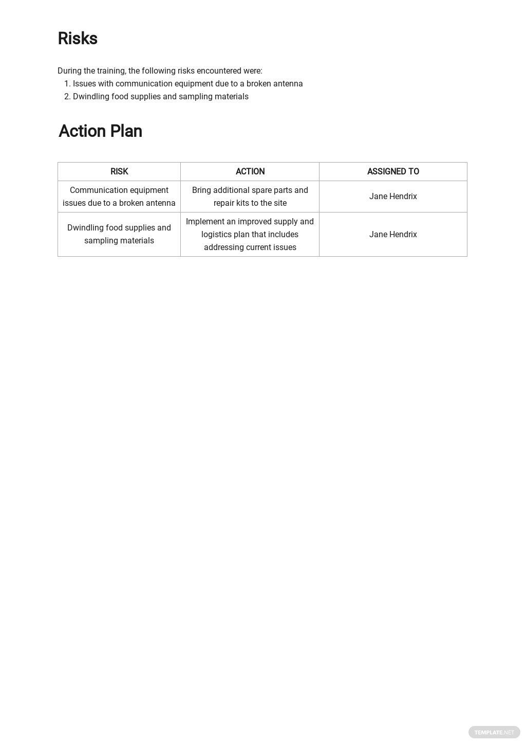 Daily Activity Report Template 3.jpe