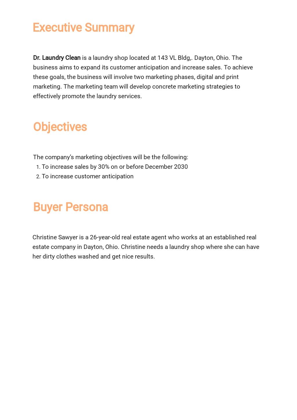Marketing Strategy Plan Template 1.jpe