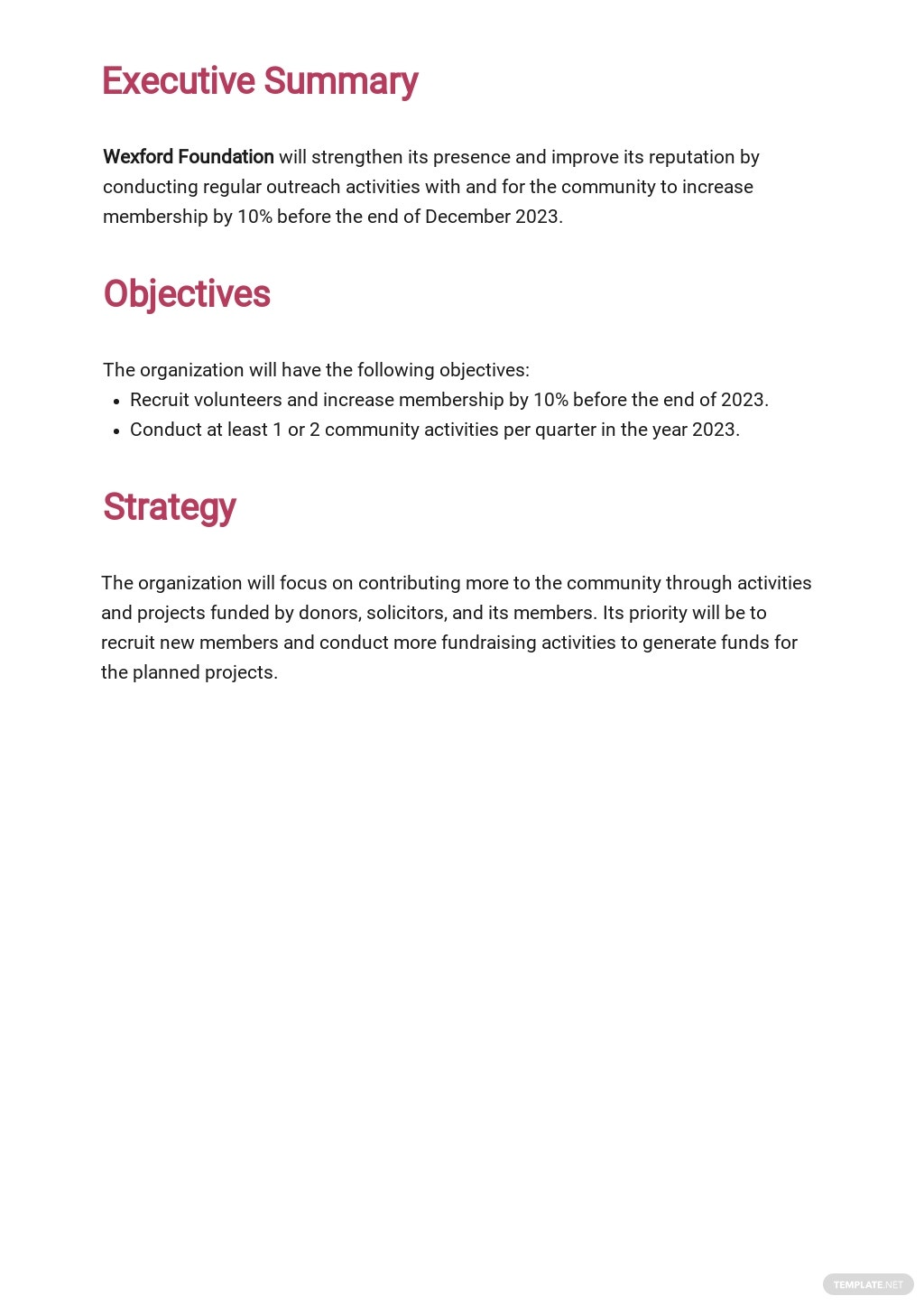 Nonprofit Strategic Plan Template 1.jpe