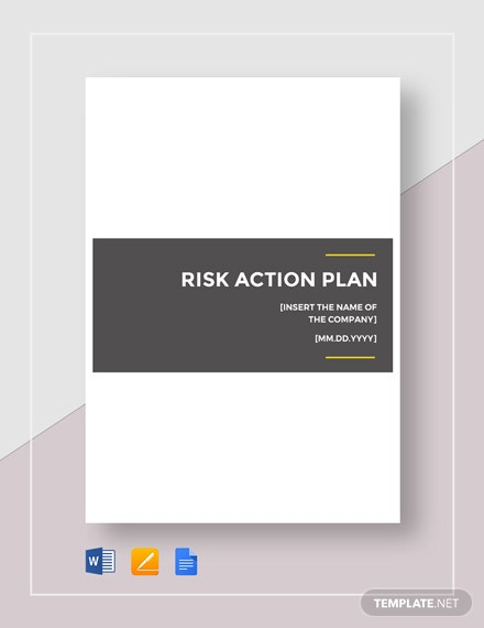 Risk Action Plan