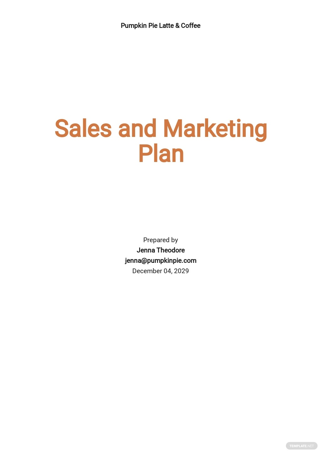 Sales and Marketing Plan Template.jpe