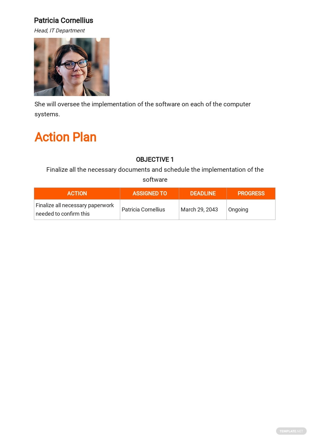 Software Implementation Plan Template 3.jpe