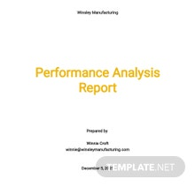 Performance Analysis Report Template