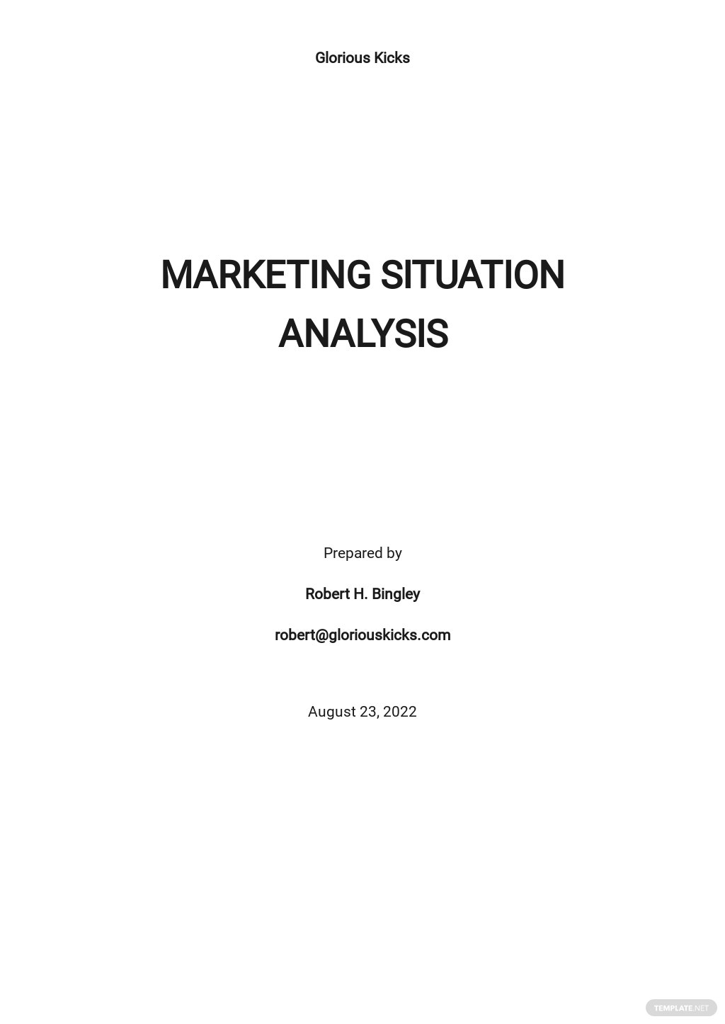Marketing Situation Analysis Template.jpe