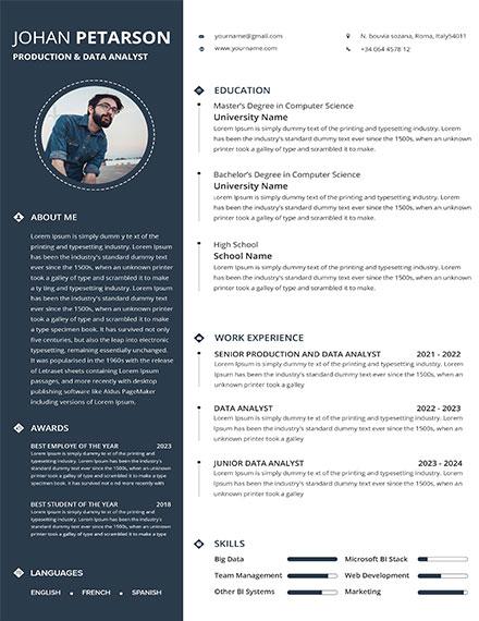 Production Data Analyst resume