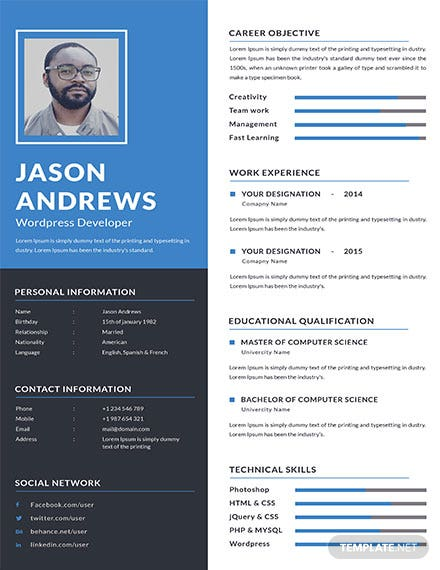 Wordpress Developer Resume