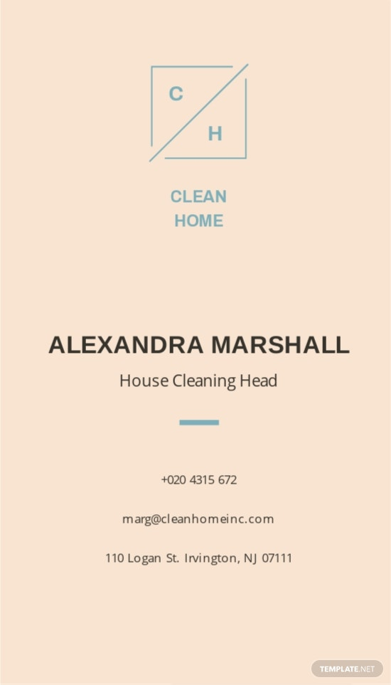 House Cleaning Business Card Template 1.jpe