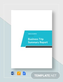 Business Trip Summary Report Template