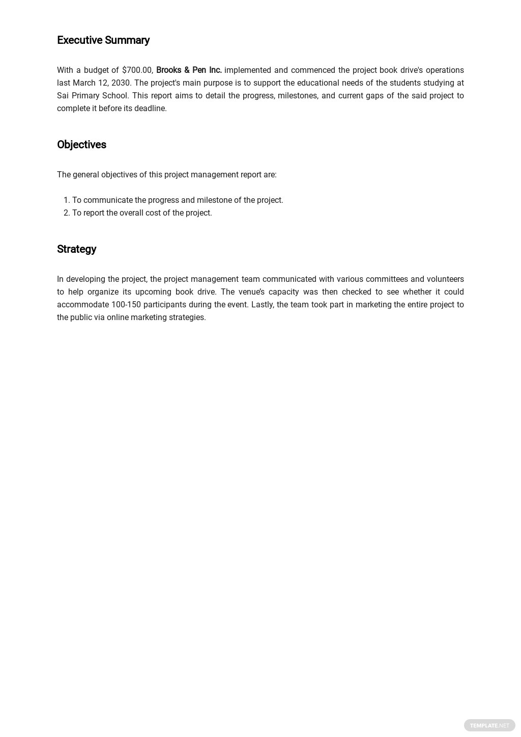 Project Management Report Template 1.jpe