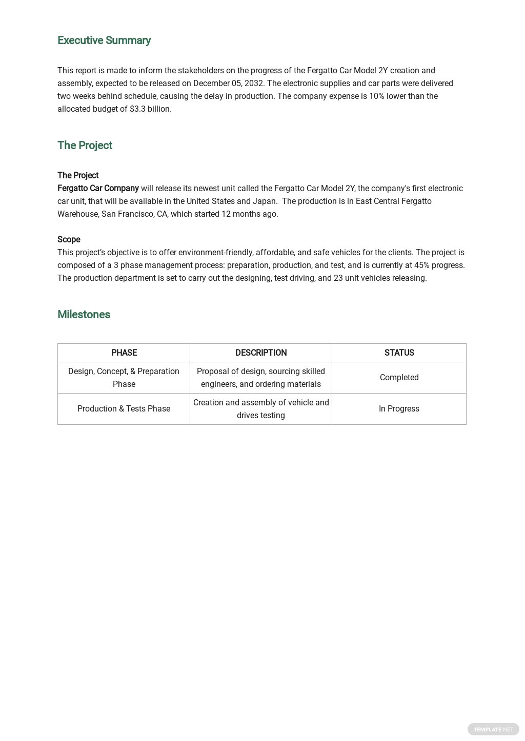 Project Management Weekly Status Report Template 1.jpe