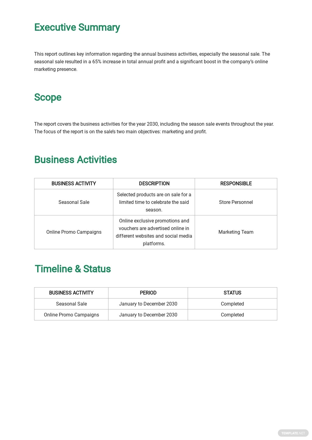 Annual Business Report Template 1.jpe