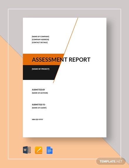 assessment report 4