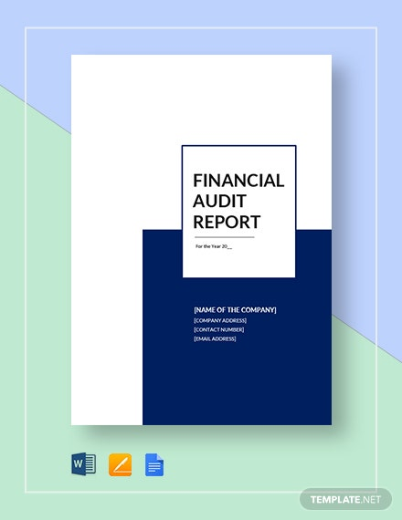 financial audit report 4