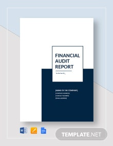 Financial Audit Report Template