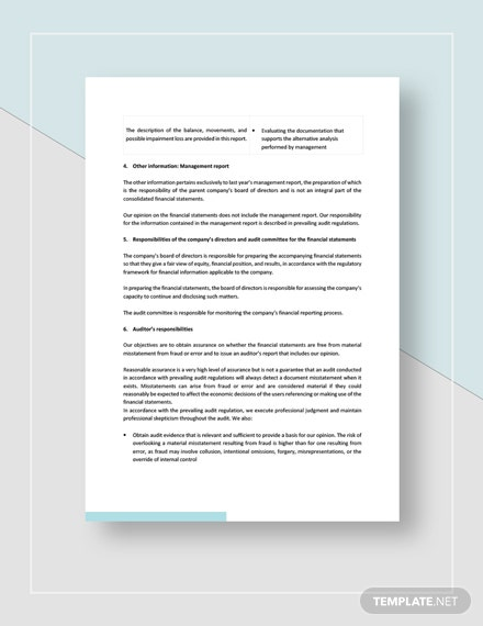 Private Company Audit Report Sample Download