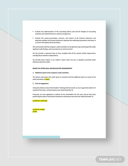 Sample Private Company Audit Report Sample