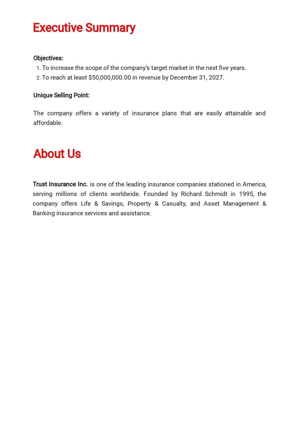 Insurance Business Plan Template  1.jpe