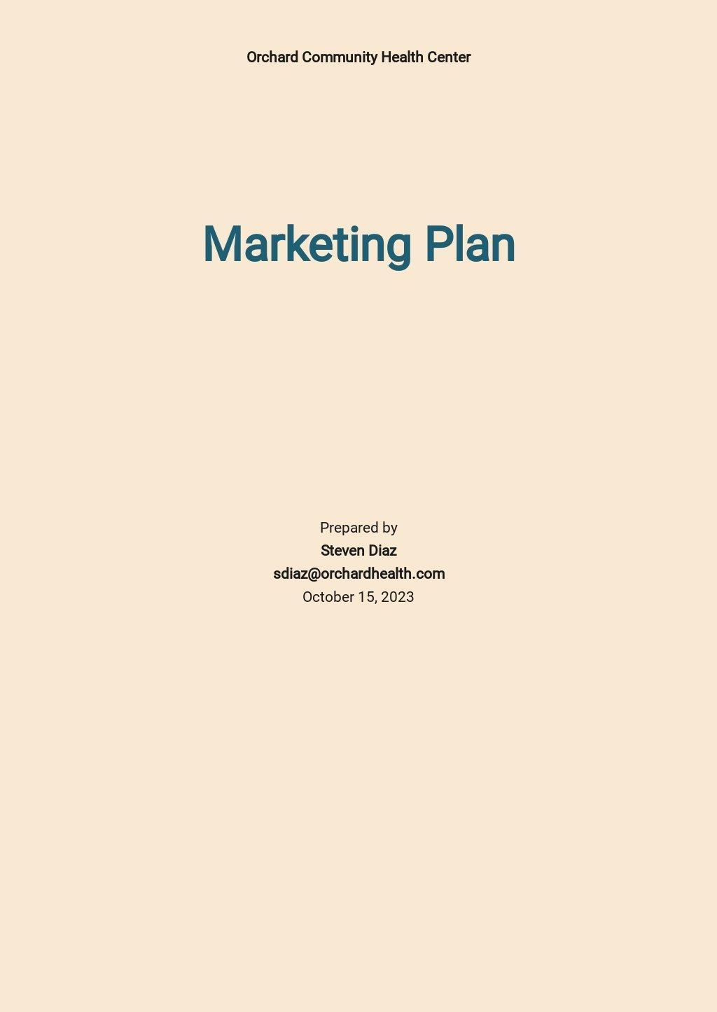Healthcare Marketing Plan Template