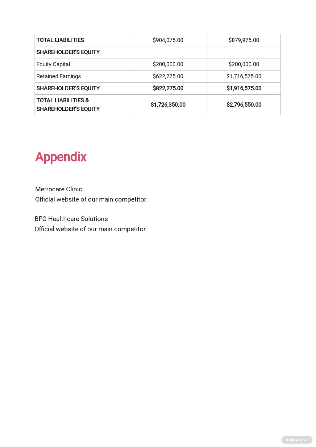 Healthcare Business Plan Template  10.jpe