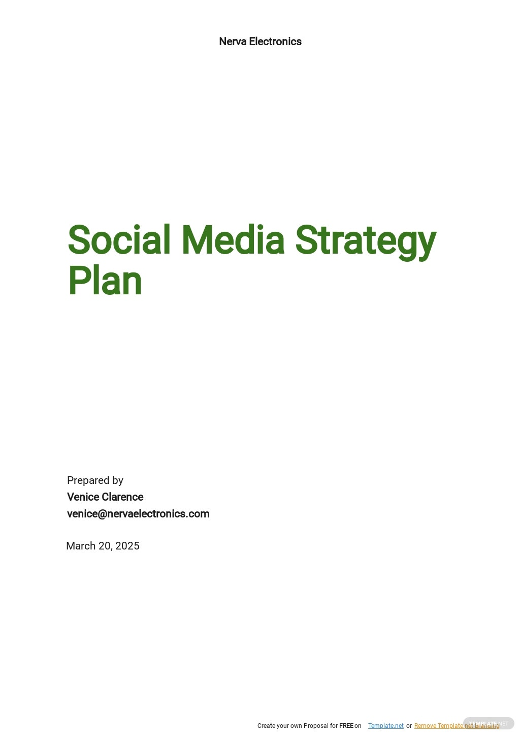 Social Media Strategy Plan Template.jpe