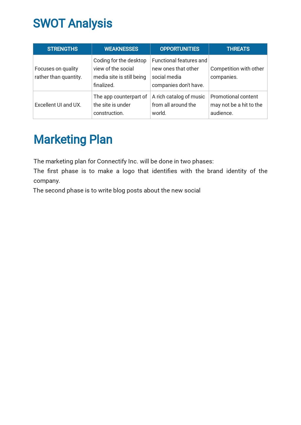 Social Media Business Plan Template  3.jpe
